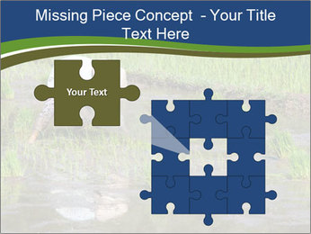 Rice Planting PowerPoint Templates - Slide 45
