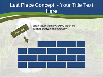 Rice Planting PowerPoint Templates - Slide 46