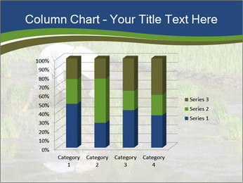 Rice Planting PowerPoint Templates - Slide 50