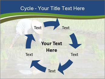 Rice Planting PowerPoint Templates - Slide 62