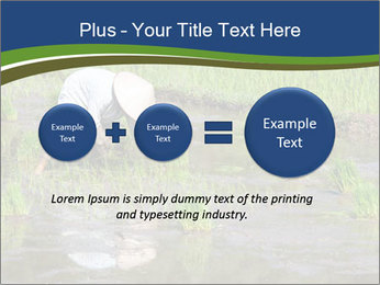 Rice Planting PowerPoint Templates - Slide 75