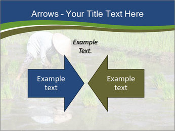 Rice Planting PowerPoint Templates - Slide 90