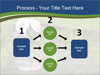 Rice Planting PowerPoint Templates - Slide 92