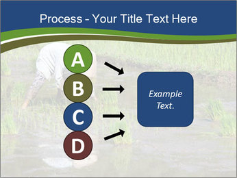 Rice Planting PowerPoint Templates - Slide 94