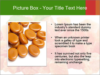 Dried papaya PowerPoint Template - Slide 13