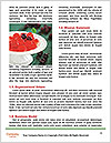 0000088575 Word Templates - Page 4