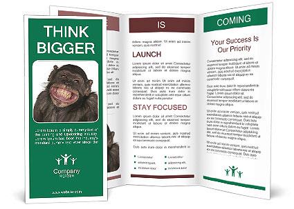 0000088583 Brochure Template