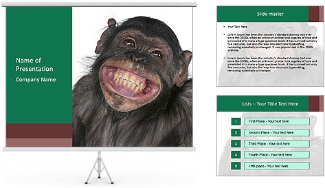 Monkey between Chimpanzee and Bonobo smiling PowerPoint Template