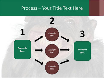 Monkey between Chimpanzee and Bonobo smiling PowerPoint Templates - Slide 92