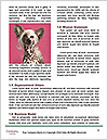 0000088583 Word Templates - Page 4