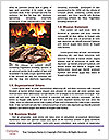0000088593 Word Templates - Page 4