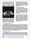 0000088595 Word Template - Page 4