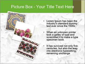 Floral Decorative Carve PowerPoint Template - Slide 17