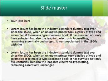 Veg Salad PowerPoint Template - Slide 2