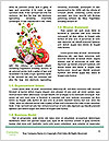 0000088603 Word Template - Page 4