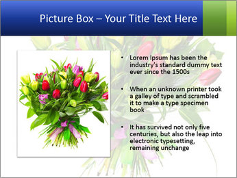 Tulip Bouquet PowerPoint Templates - Slide 13
