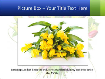 Tulip Bouquet PowerPoint Templates - Slide 15