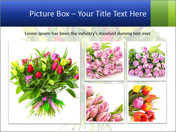 Tulip Bouquet PowerPoint Templates - Slide 19