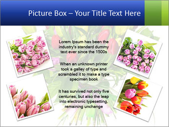 Tulip Bouquet PowerPoint Templates - Slide 24