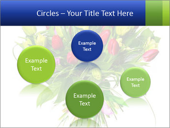 Tulip Bouquet PowerPoint Templates - Slide 77