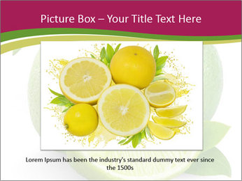 Green Juicyy Lime PowerPoint Template - Slide 15