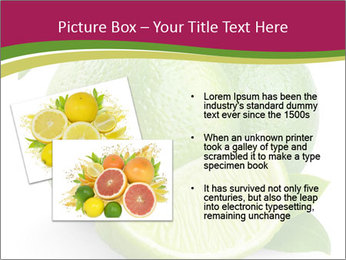 Green Juicyy Lime PowerPoint Template - Slide 20