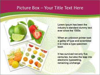 Green Juicyy Lime PowerPoint Template - Slide 23