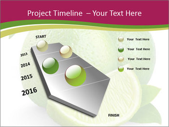Green Juicyy Lime PowerPoint Template - Slide 26