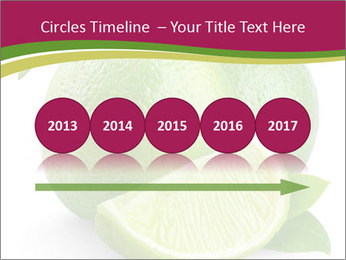 Green Juicyy Lime PowerPoint Template - Slide 29