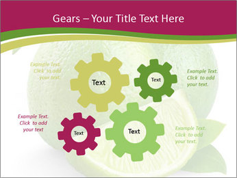 Green Juicyy Lime PowerPoint Templates - Slide 47