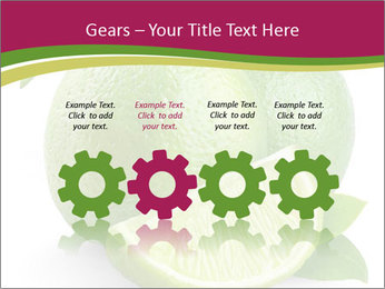 Green Juicyy Lime PowerPoint Template - Slide 48