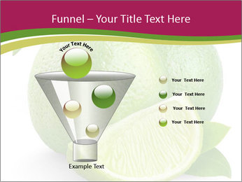 Green Juicyy Lime PowerPoint Templates - Slide 63