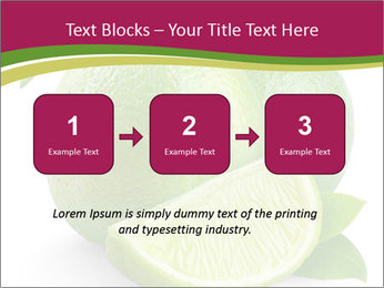 Green Juicyy Lime PowerPoint Template - Slide 71