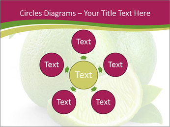 Green Juicyy Lime PowerPoint Templates - Slide 78
