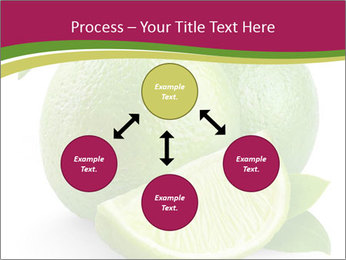 Green Juicyy Lime PowerPoint Templates - Slide 91