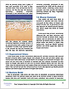 0000088609 Word Templates - Page 4