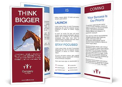 0000088612 Brochure Template