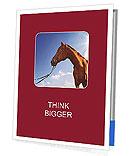 0000088612 Presentation Folder