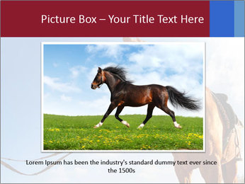 Saddled Horse PowerPoint Template - Slide 16