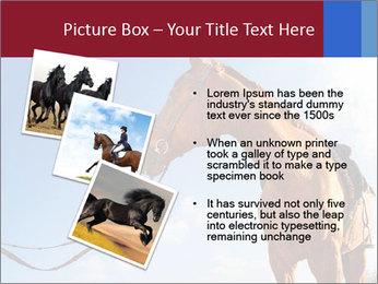 Saddled Horse PowerPoint Template - Slide 17