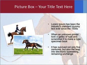 Saddled Horse PowerPoint Template - Slide 20