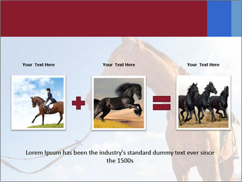 Saddled Horse PowerPoint Template - Slide 22