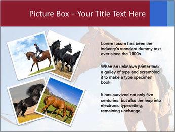 Saddled Horse PowerPoint Template - Slide 23