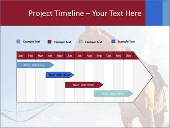 Saddled Horse PowerPoint Template - Slide 25