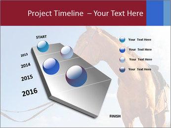 Saddled Horse PowerPoint Template - Slide 26