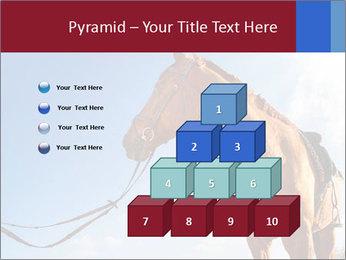 Saddled Horse PowerPoint Template - Slide 31