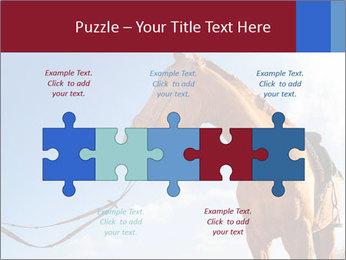 Saddled Horse PowerPoint Template - Slide 41