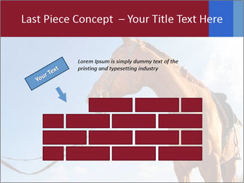 Saddled Horse PowerPoint Template - Slide 46