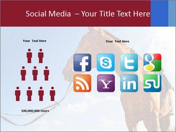 Saddled Horse PowerPoint Template - Slide 5