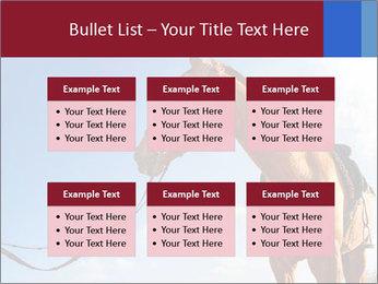 Saddled Horse PowerPoint Template - Slide 56